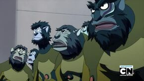 Monkeys 2011.jpg
