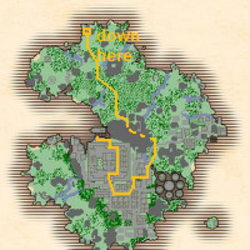 Quest Overview Pages