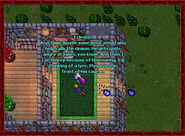 Scatterbrained Sorcerer House3