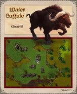 Water Buffalo Artwork