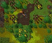 Venore Daily Tasks Quest Sabotage