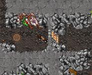 Zao Orc Land Renegade