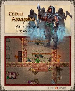 Cobra Assassins Artwork