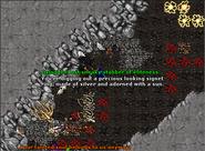 Ferumbras Ascension - Ragiaz Ring