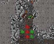 Formorgar Mines Hoist Box