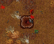 Zao Wailing Widow Cave Surface Ramp