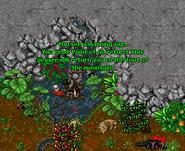 Chyllfroest Dungeon Geyser