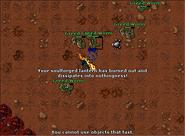 Feaster of Souls Quest - Lantern 2