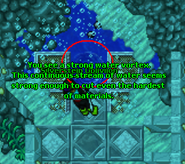 Strong Water Vortex
