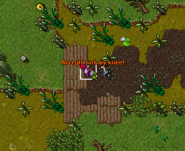Goblin Merchant Quest Adventurer Success