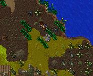 Goblin Merchant Quest Swamp Gas