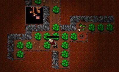 Dark Mushroom Spawn.jpg