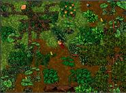 Update 7.5 Jungle