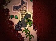 Darashia Dragons