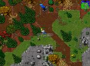 Mission 06 Run Like a Wolf 4