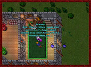 Scatterbrained Sorcerer House2