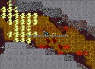 Feaster of Souls - Brain Aura
