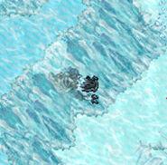 Half Frozen Ursagrodon
