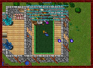 Scatterbrained Sorcerer House5