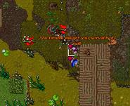Goblin Merchant Quest Adventurer Fail