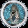 Schüler in der Delfinschule