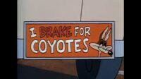 Wile E Coyote Tiny Toon Adventures movie