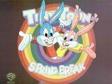 Tiny Toon Spring Break