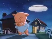 Hampton's Piggy bottom (15)