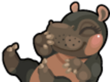 Cubby Hippo