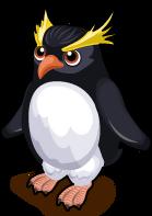 Rock Hopper Penguin