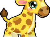 Cubby Giraffe