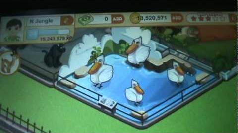 Tiny Zoo Contest Winner Announcement