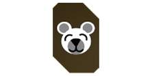 Patch Teddy.png