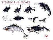 Titanic Phantoms Shark Sketches