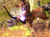 Panos, Lord of the Briarwood - Centaur Hero