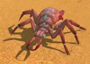 AmeisenlöweLauerer