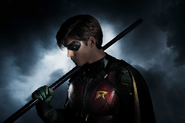 Robin first look