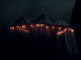 Haly's Circus