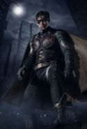 Robin full-body promotional image