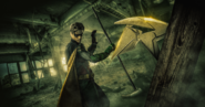 Robin promotional image
