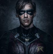 Robin close-up promotional image
