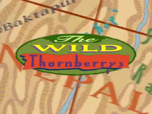 The Wild Thornberrys.png