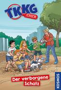 Cover TKKG Junior Buch 12 - Der verborgene Schatz