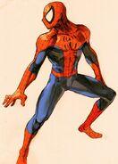 Spider Man (Marvel vs Capcom 2)
