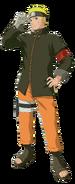 Naruto (The Last)