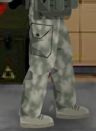Army DCU Pants.jpg