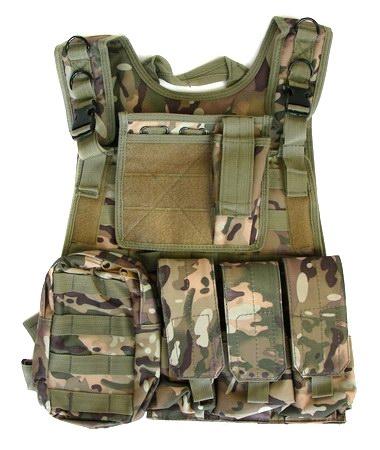 Carrier Harness.jpg