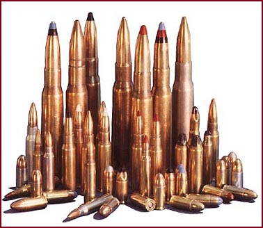 Ammunition Variety.jpg
