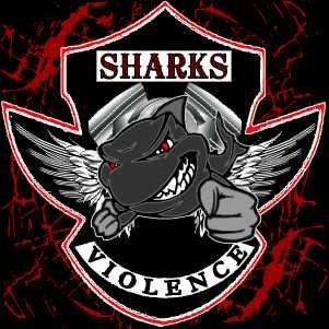 SHARKS-USA-Okt2013.jpg