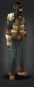 Tlsdz welders mask equipped